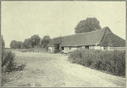 Cole's Barn and Meadow